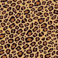 cheetah print EVERYTHING  <3