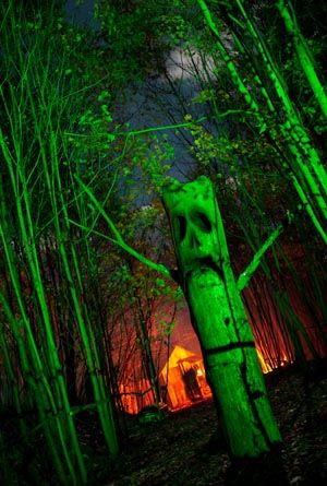 34 best Haunted Forest images on Pinterest Cowls, Halloween prop