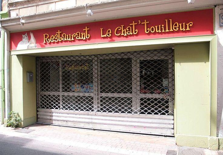 Le chat'touilleur Avignon Vaucluse