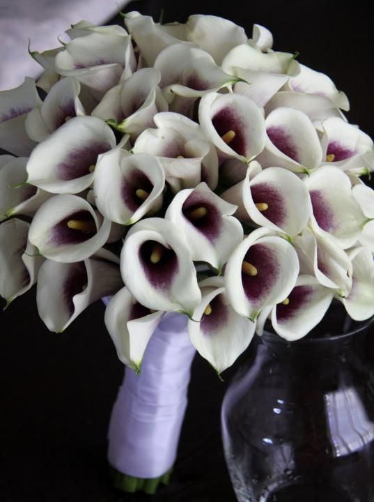 Wedding Bouquet Flowers KellysFlowers_Picasso Mini Calla Lily Bridal