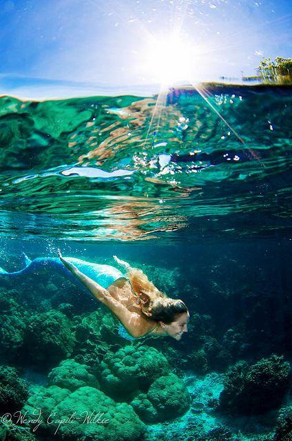 .♥ ✿⊱╮♥ Mermaid ♥ ✿⊱╮♥ #mermaidlove #exmermaid #iliveunderwater | pinned by http://www.wfpblogs.com/author/nicolerichards/