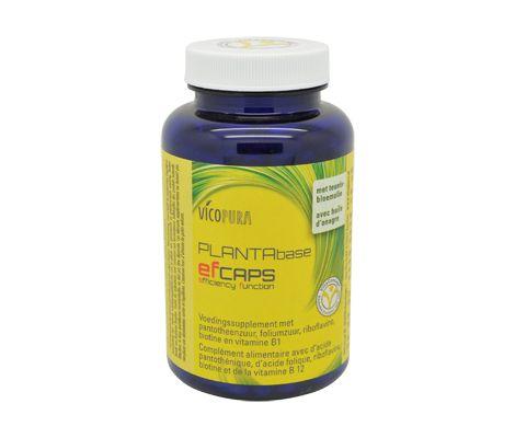 Vicopura Planta Base Ef caps is speciaal ontwikkeld ter ondersteuning van haren, huid en nagels. | De Gezonde Bron, dé webshop voor natuurlijke verbetering van uw gezondheid.