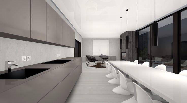 Minimalistic villa with semi glossy strech-roof.