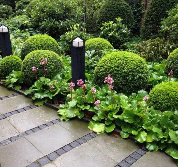 Buis Boule Plus De 100 Photos Pour Vous Archzine Fr Buis Beaux Jardins Deco Jardin