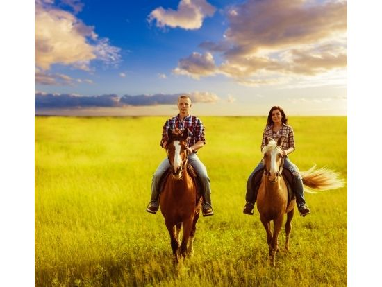 Gunstock Ranch Horseback Riding, Oahu / Waikiki tours & activities, fun things to do in Oahu / Waikiki | HawaiiActivities.com