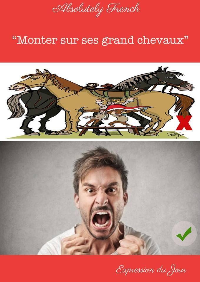 """""""Il s'est énervé et est monté sur ses grands chevaux"""" #montersursesgrandschevaux #expressiondujour #Expression #Quotidienne #Française #French #Daily #Learn #Apprendre #Français #French #School #Absolutely #French"""