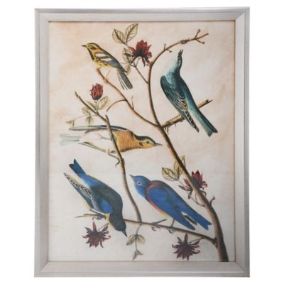 Lámina para enmarcado 43x33 cm pájaros 1