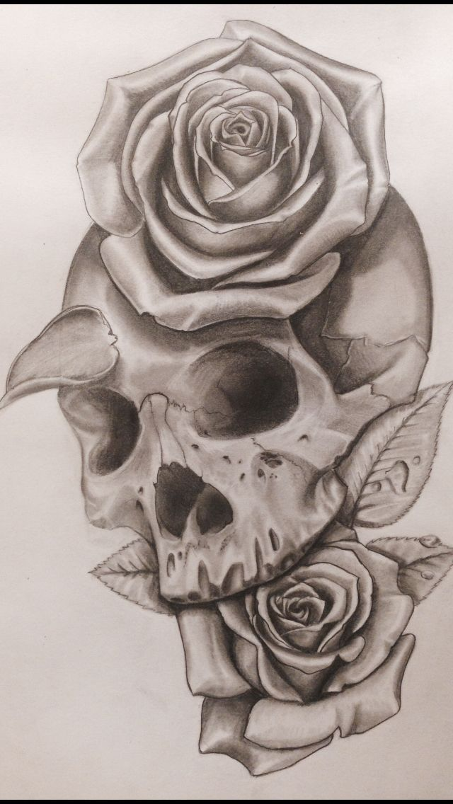 Skull rose drawing