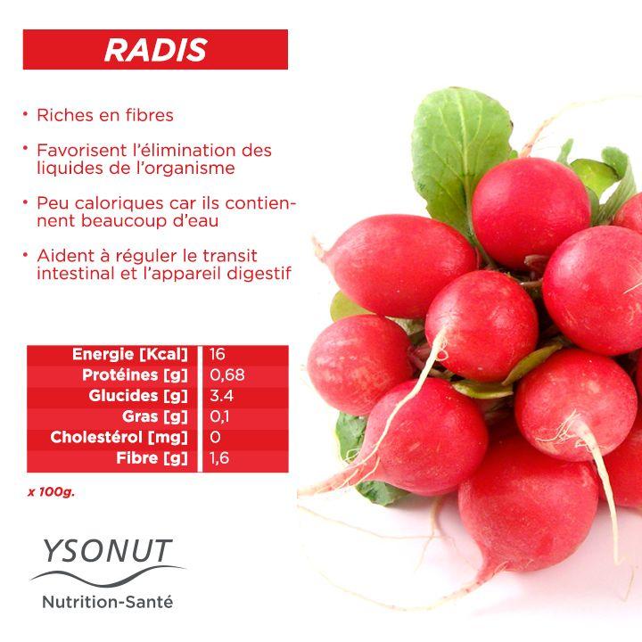 Le #radis, c'est l'un des légumes qui apporte le plus de bénéfices à notre organisme. Vous pouvez en manger sans limite pendant la première phase de votre régime #Protéifine.