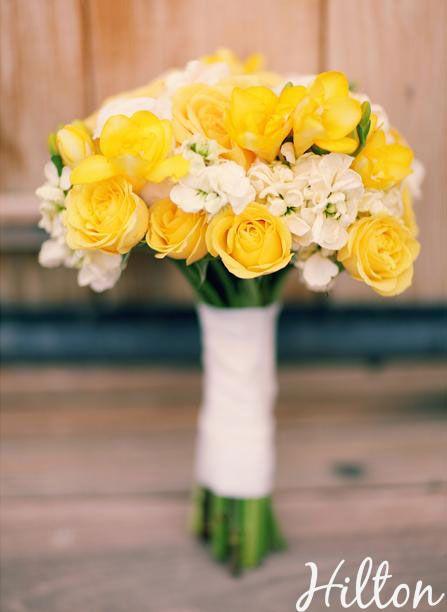 Amarelo e branco...gosto de rosas amarelas