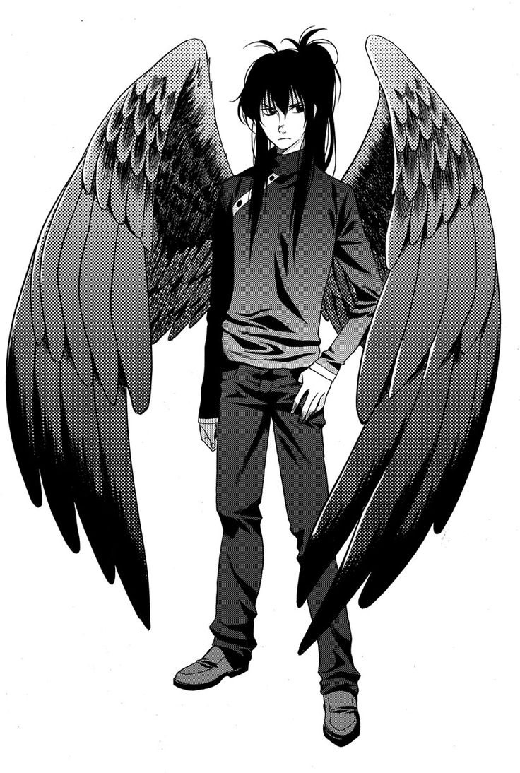 Character design for Fang, of the Maximum Ride manga series.