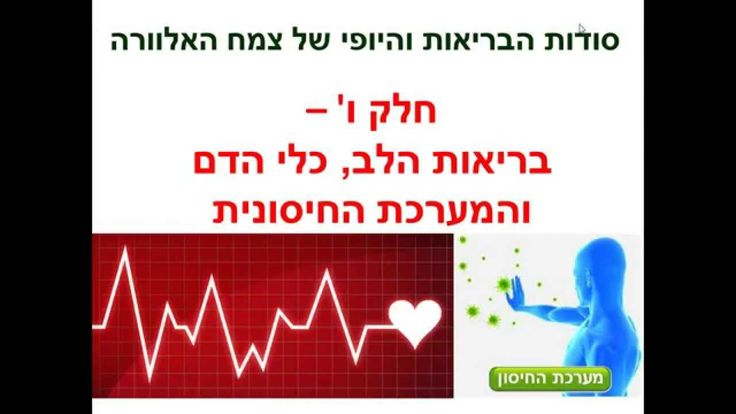 בריאות הלב, כלי הדם והמערכת החיסונית