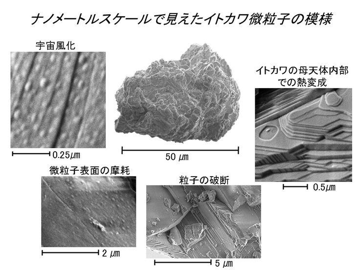 微粒子表面で観察された模様、4パターン。