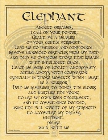 Elephant Parchment Page for Book of Shadows or Poster   eBay