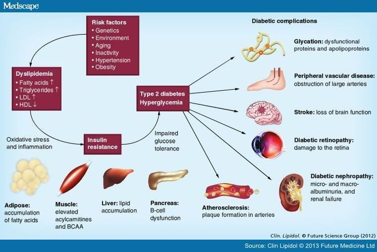 disease report type 1 diabetes The global type 1 diabetes market size was valued at usd 2552 billion in 2016  and is  to learn more about this report, request a free sample copy  of insulin  to treat this disorder in conjunction with the increasing obesity rates, sedentary.