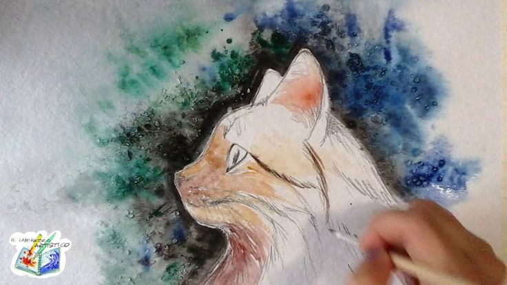 SpeedArt - Gatto ad acquerello