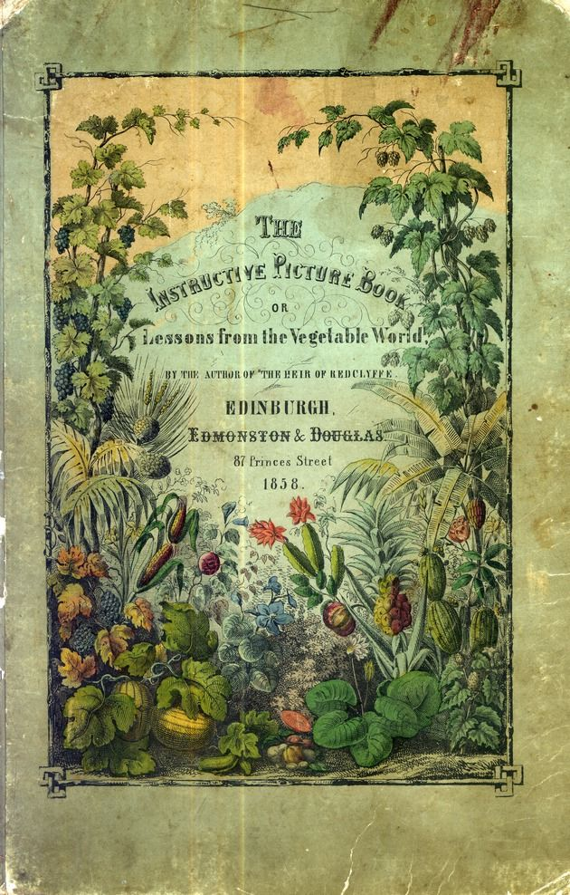 Antique garden book