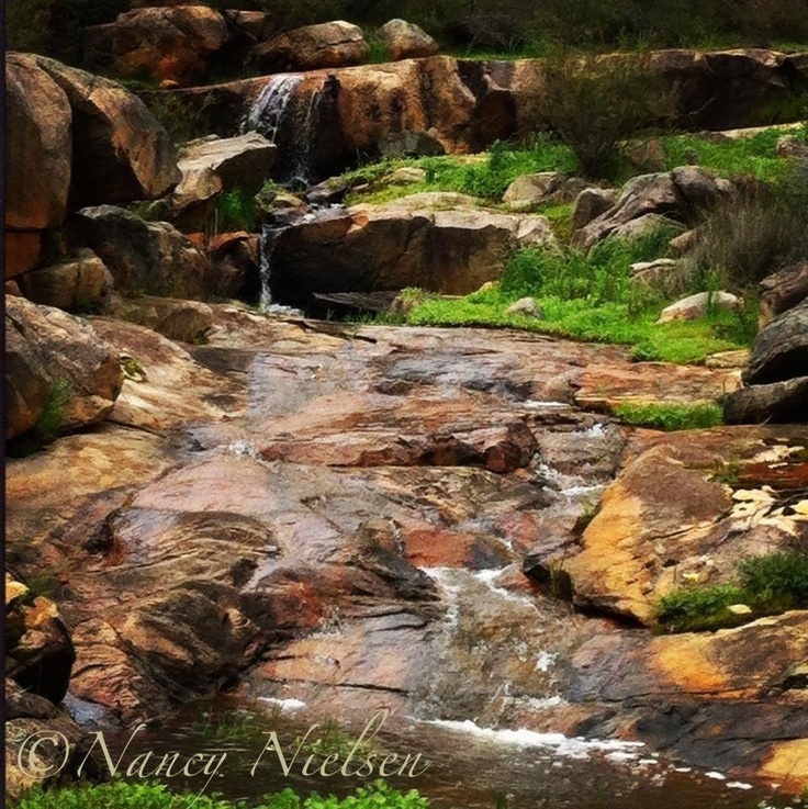 This photo was taken at the start of winter, in the middle of Brigadoon National Park, Western Australia.