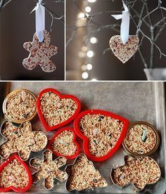 DIY ~ Bird Seed Ornament Recipe (no baking required) + Step-by-Step Tutorial. Easy to make and so sweet to watch your feathered friends enjoy. Make a bird feeding tree!