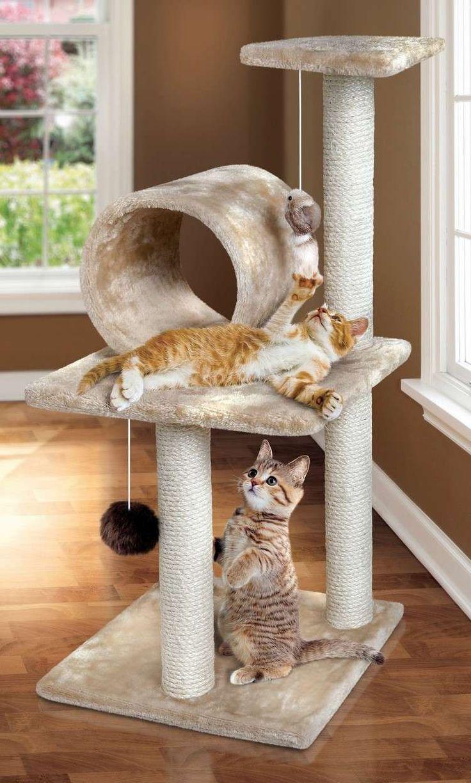 Les 25 meilleures id es de la cat gorie niche pour chat sur pinterest niche chat niche pour - Tuto arbre a chat ...