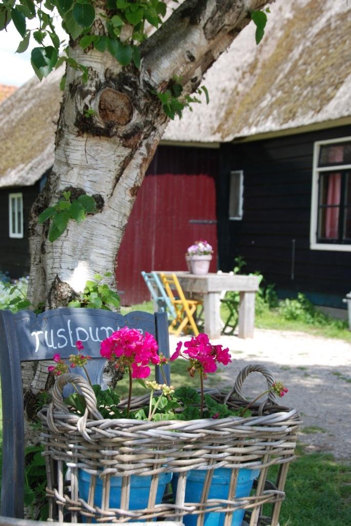 """""""camping"""" en de Nederlands"""
