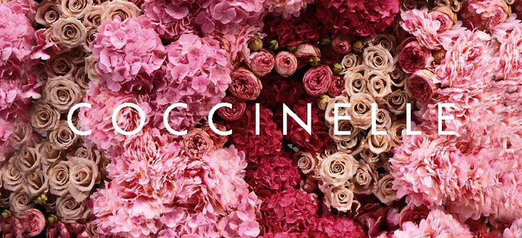 Coccinelle SS14: a journey through femininity's souls. - Goodlovers