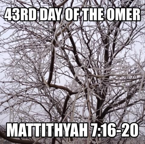 1000+ images about Counting The OMER 2016 on Pinterest | Pentecost ...