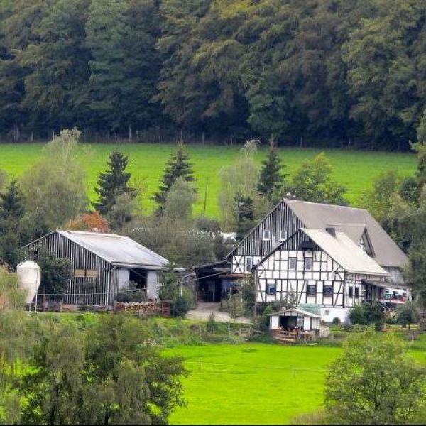Hof Keppel   Vakantiehuisjes in het Sauerland