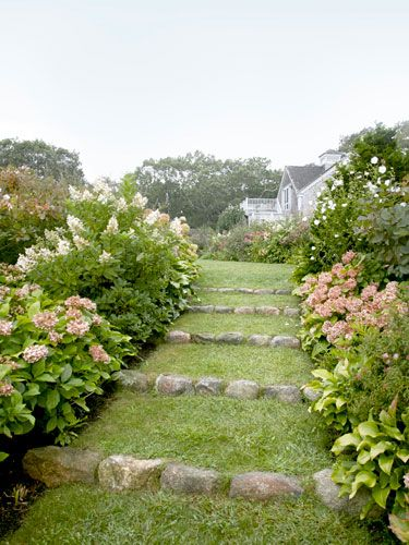 A pretty walkway in a Martha's Vineyard garden, created to soften a steep incline.  The gardener has made a stair with grass treads and stone risers planting, alliteratively, on either side, hydrangeas, hostas and hibiscus.