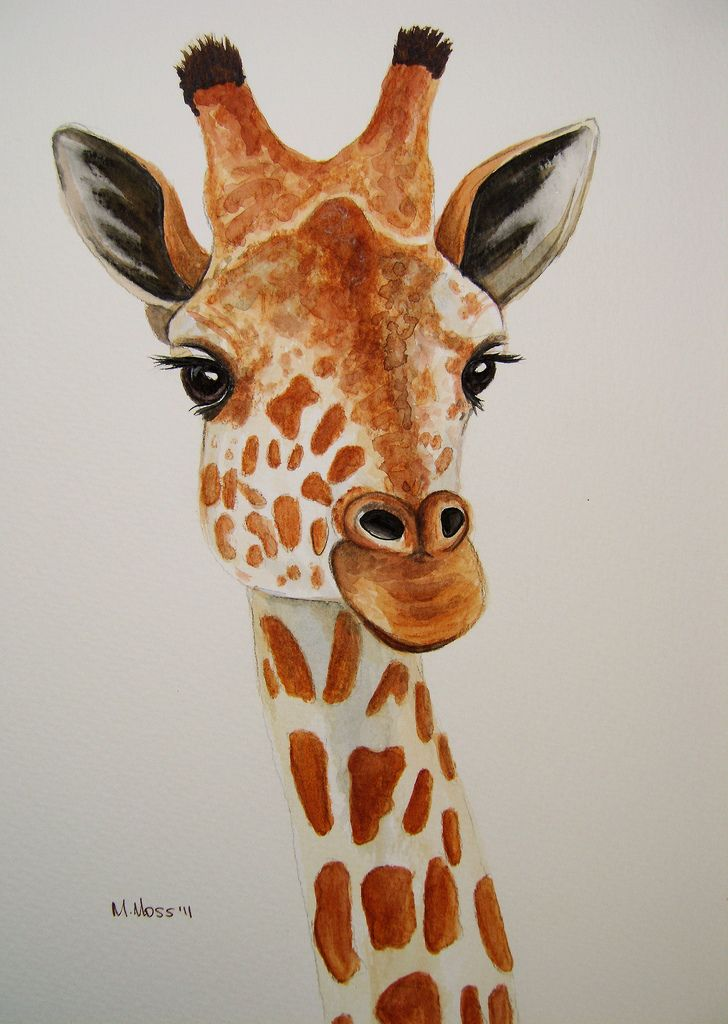 Giraffe portrait in watercolour | Flickr - Photo Sharing!