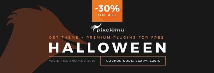 Last chance to save some money buying awesome #WordPress #themes! Grab everything you can 30% OFF!