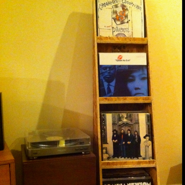 diy vinyl record shelf - Record Shelf