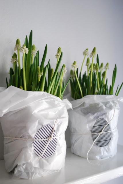 DecoDreamer's Diary: Easter flowers