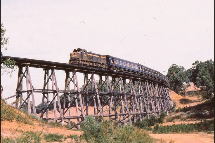 ‪Today's historic pic: a special tour train from Orbost hauled by T378 on a wooden trestle near Wairewa, in Eastern Victoria, March 16 1985. ‬