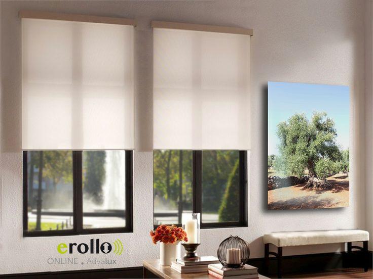 plissee rollo wohnzimmer: rollo deko esszimmer mit blauen plissees germania rollo makeyourhome
