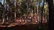 Room Rates at The Cabins at Disney's Fort Wilderness Resort | Walt Disney World Resort
