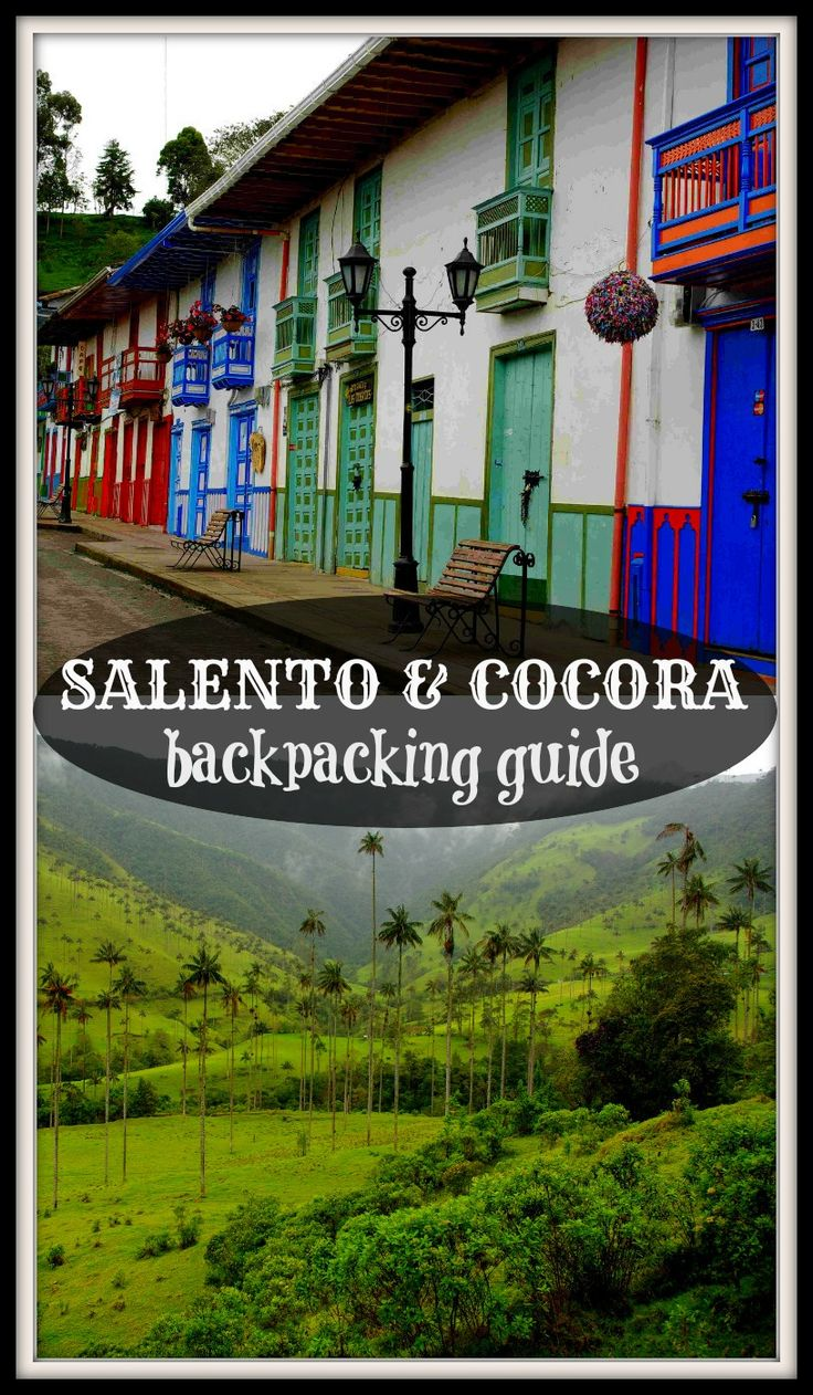 Ultimate guide to visit coffee plantations and wax palm valley near Salento, Colombia