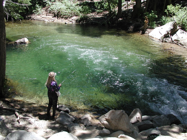 117 best high sierras images on pinterest nature for Fly fishing spots near me