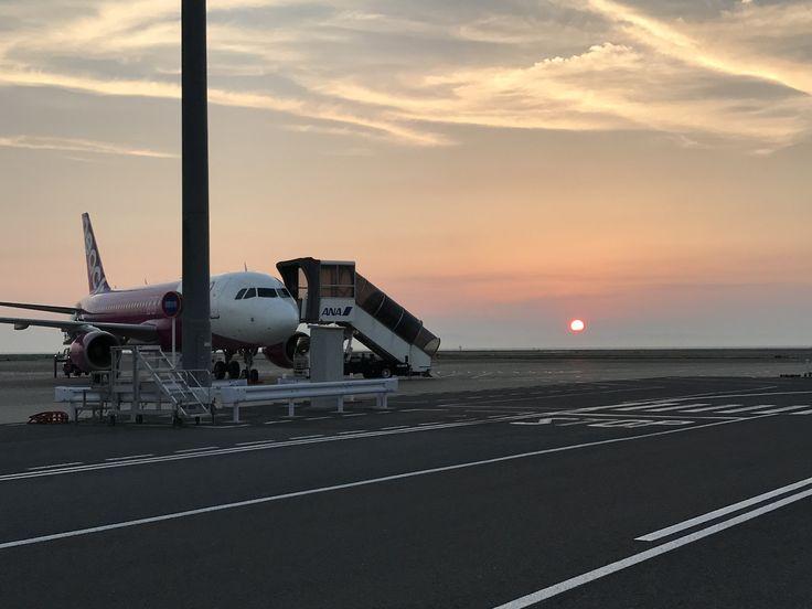 Peach aviation A320-200 at Kansai international airport #a320 #airbus #peachaviation