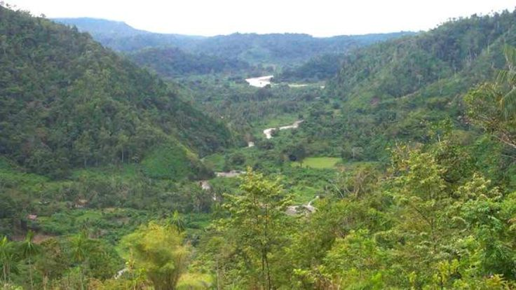 If your feeling an adventure, there are a number of trekking trails in the Morobe Province. This particular trail runs from Finschhafen to Lae and takes 3-4 day to complete. http://www.pagahillestate.com/visiting-morobe-province/