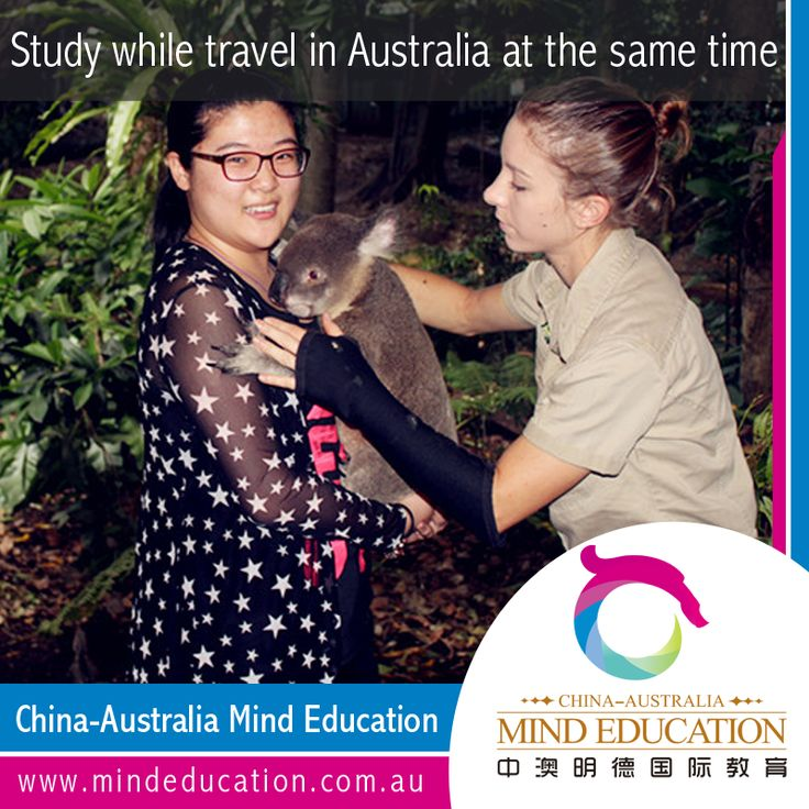 "China-Australia Mind Education is an international company founded by educators from Beijing Normal University and the University of Queensland.  Fulfill a dream travel and to study in Australia. Visit the world's largest Koala Conservation Centre -""LonePine"" and watch animal shows, learn about the Australian featured animals like a kangaroo, and get the opportunity to take pictures with a cute koala!  #studyinAustralia #travel #study #education"