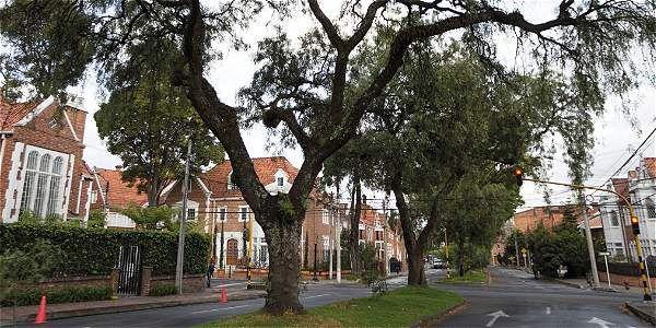 Las casas de estilo inglés son características del barrio Teusaquillo.