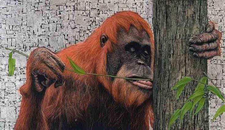 """Sumatran Orangutang"", Oil and Silver Leaf on Canvas, 90cm by 120cm, (2015) by Marc Alexander"