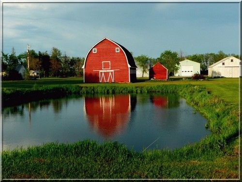 #Farm holidays Canada - red barn and farm dam on a Candian farm