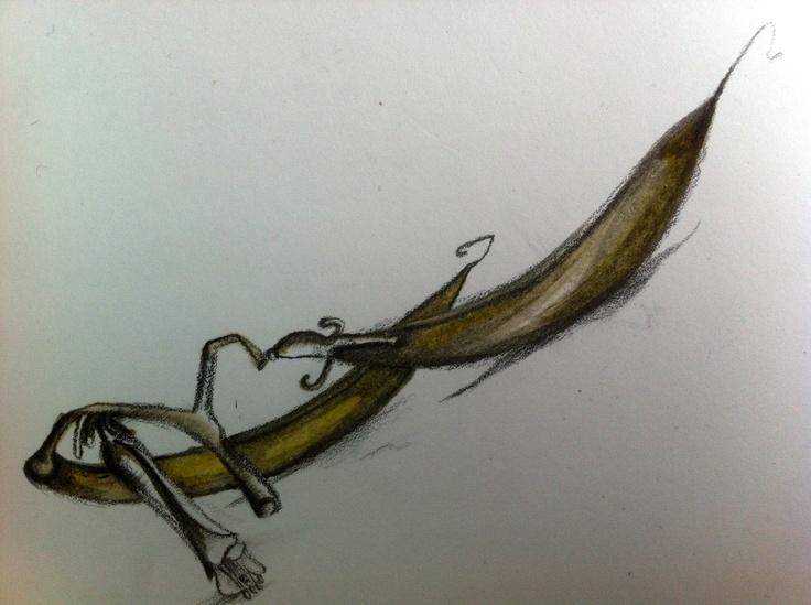 flax pod sketch