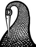 Stylist stork