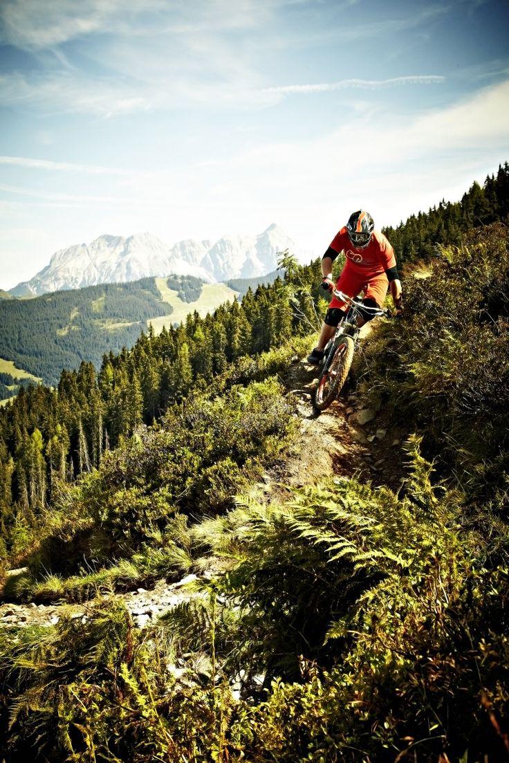 Saalbach Hinterglemm #bikepark #trail