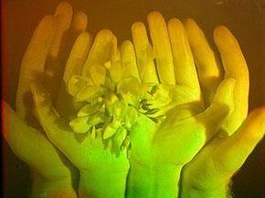 http://www.globalimages-hologramartcollection.com/#!margaret-benyon/c1n0f