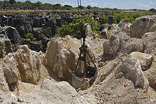 Wikipedia article about Nauru