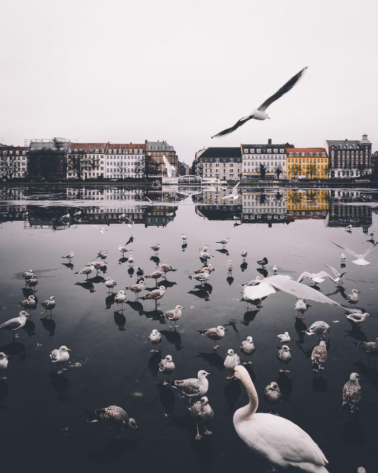 Copenhagen                                                                                                                                                                                 More